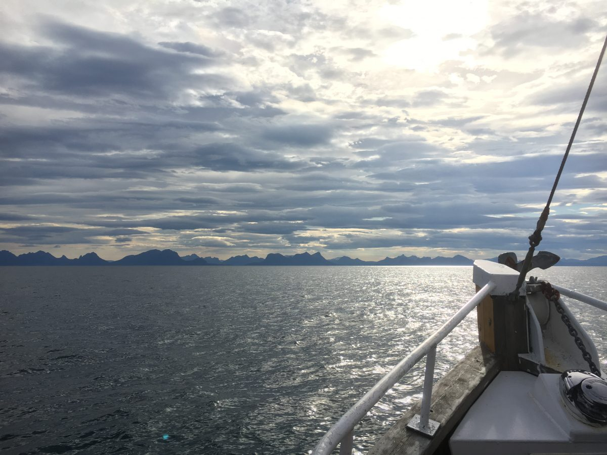 Vacation in Lofoten, Norway